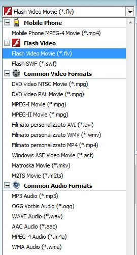 Menu formati video
