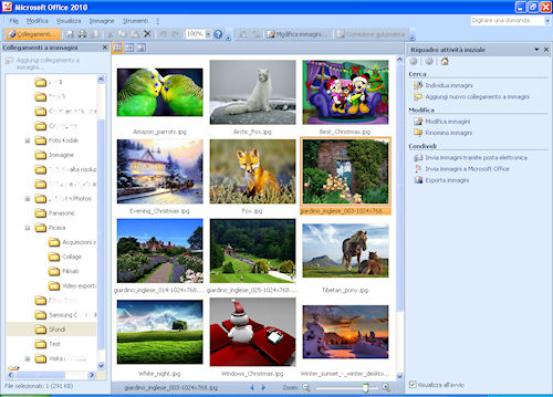Interfaccia utente Microsoft Picture Manager