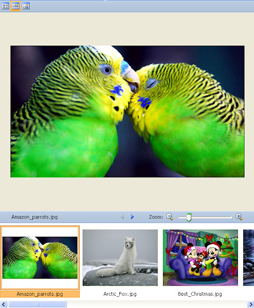 Microsoft Office Picture Manager: Esempio di visualizzazione sequenza