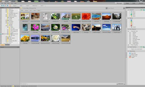 ACDSee Photo Manager: Interfaccia utente - Sezione Manage