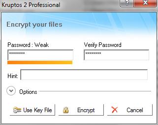 Kruptos 2 Professional: Pannello inserimento password