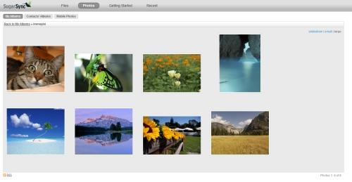 SugarSync: Esempio di album con immagini