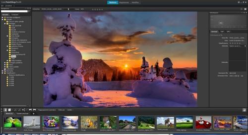 PaintShop Pro X4: Area di lavoro Gestione