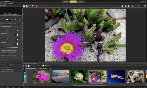 PaintShop Pro X4: Esempio di immagine prima della regolazione automatica