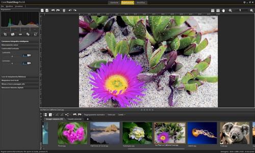 PaintShop Pro X4: Esempio di immagine dopo la regolazione automatica
