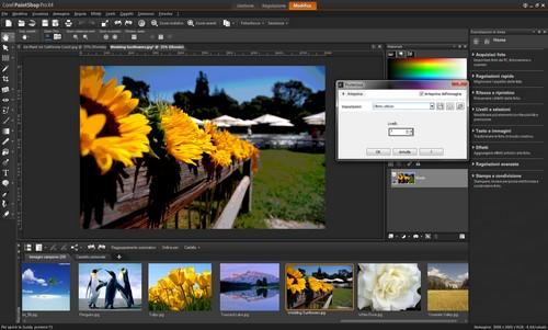 PaintShop Pro X4: Esempio di applicazione di effetto Posterizza