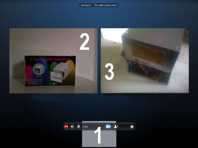 Videoconferenza a pieno schermo