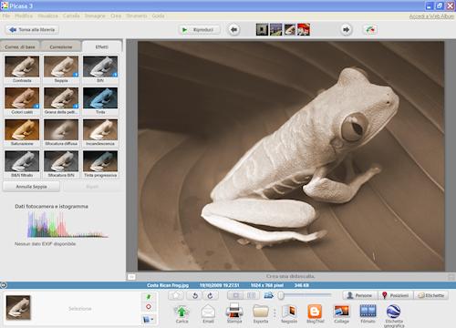 Picasa: Visualizzazione modifica (4)