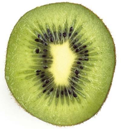 Foto del kiwi da vettorializzare