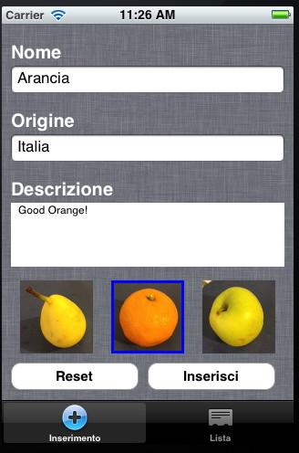 Schermata di inserimento dati per l'applicazione demo