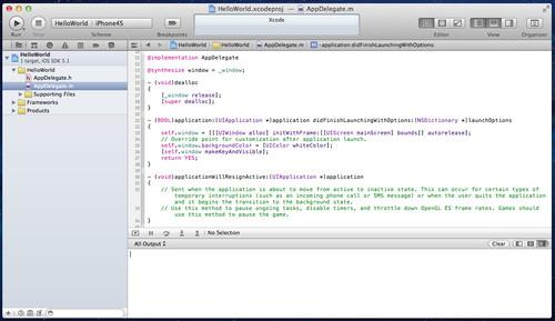 Figura 11: Schermata principale di Xcode