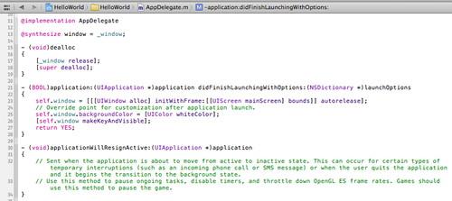 Figura 12: Xcode: area di testo dove editare i file sorgenti