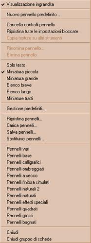 opzioni Pannello pennelli