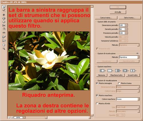 Filtro fluidifica photoshop tecniche essenziali - La finestra di fronte trama ...