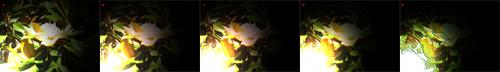 esempio di regolazioni degli effetti di luce