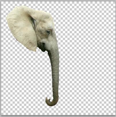 Elefante scontornato